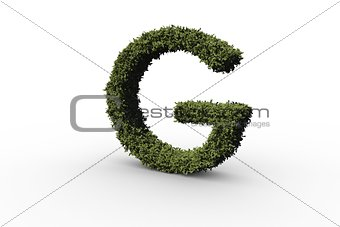 Capital letter g made of leaves