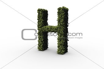 Capital letter h made of leaves