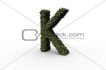 Capital letter k made of leaves