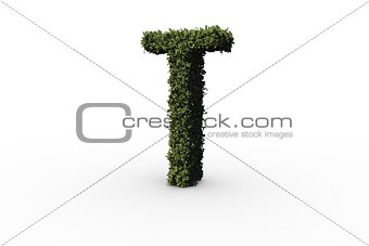 Capital letter t made of leaves
