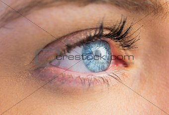 Close up of female blue eye