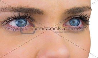 Close up of female blue eyes