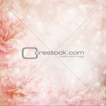 Beautiful pink rose on bokeh background