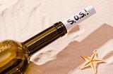 word SOS is written in the note in the bottle