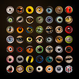 Composition of Animal eyes in cercle