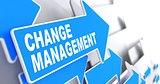 Change Management on Blue Arrow.