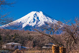 Fuji mountain in morning time