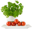 parsley in the white pot and tomato on white background