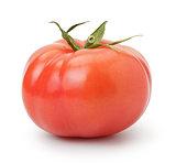 ripe red organic tomato