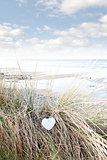 single wooden heart on beach dunes