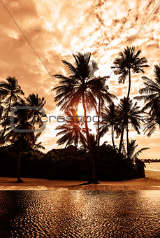 Tropical beach on sunset