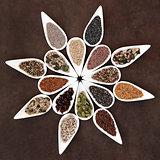 Seed Food Platter