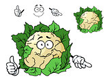 Cute happy cartoon cauliflower