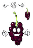 Cartoon bunch of currant berries