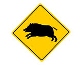 Wild boar warning sign