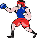 Amateur Boxer Boxing Cartoon
