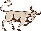 Bull Charging Side Cartoon