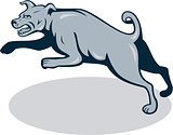 Mastiff Dog Mongrel Jumping Cartoon