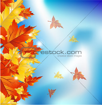 Autumn leaves border