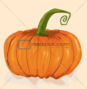 Single Orange Pumpkin