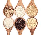 Rice Varieties