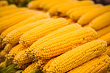 fresh yellow corn vegetable