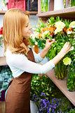 Choosing carnations