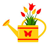 watering can and tulips