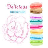 delicious macaroon
