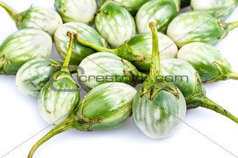 Small eggplant - CHIONATHUS PARKINONII