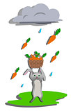 Rain for hare