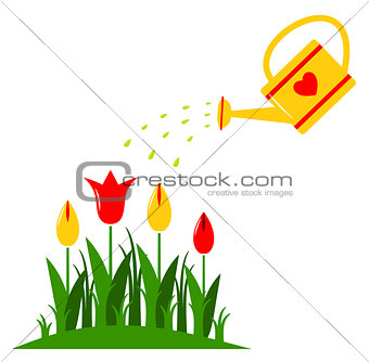 tulips and watering can