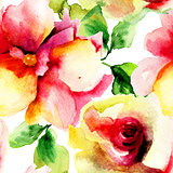 Watercolor painting with Rose flowers