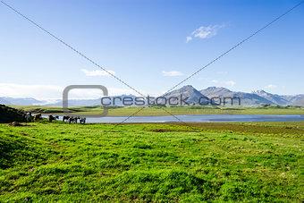 Beautiful lake against mountain background, Iceland, good summer