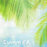 Summer vintage background