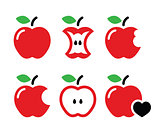 Red apple, apple core, bitten, half vector icons