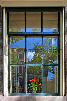 Bouquet of red tulips in the vase on the sill behind the window with reflection of building under blue sky in Amsterdam, Netherlands.