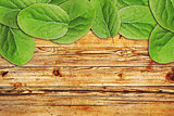 Green apple leaves on old wooden background