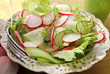 fresh salad with radishes, lettuce and cucumber