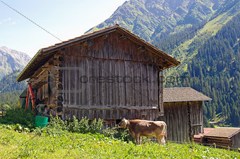 old barn in the Alps