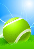 Tennis Ball on Daytime Background