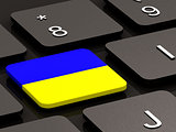 Ukrainian flag on button