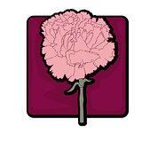 carnation clip art