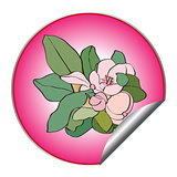spring flower sticker