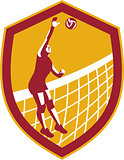 Volleyball Player Spike Ball Net Retro Shield