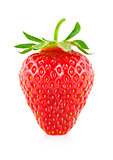 Ripe juicy strawberry