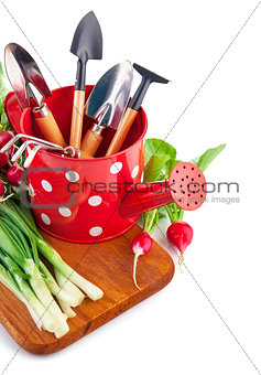 Watering can with garden tools and fresh vegetables