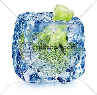 Broccoli in ice cube