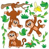 Monkey theme collection 1