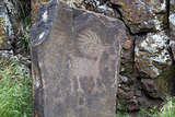 Native Indian Antelope Animal Petroglyph